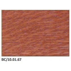 Kolor BC/10.01.67